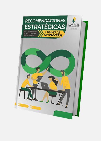 recomendaciones-estrategicas-negocio-ebook-lofton
